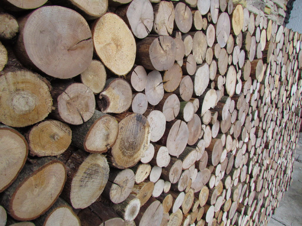 woodwalls  in new design
